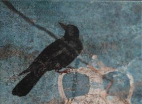 La licenciada en ciencias exactas y fotógrafa de la naturaleza Karin Faber dona a la Biblioteca de la RAED la obra «Aquellas aves de Pompeya. Un paseo ornitológico en el año 79 d.C.», editada por la Real Academia de Bellas Artes de San Fernando