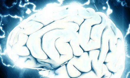 L'activació del cervell permet aconseguir una major longevitat