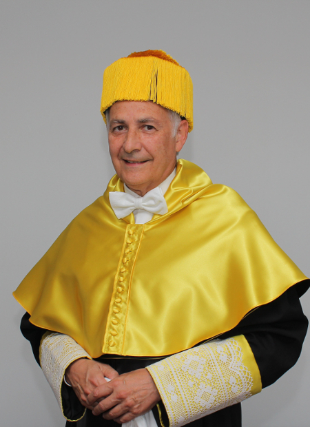 Dr. Borja Corcostegui - Académico Numerario