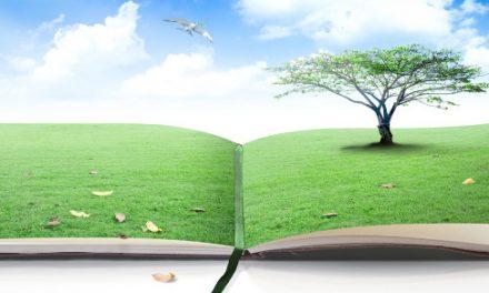 Educar en verd
