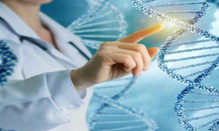 Algoritmos para la bioingeniería