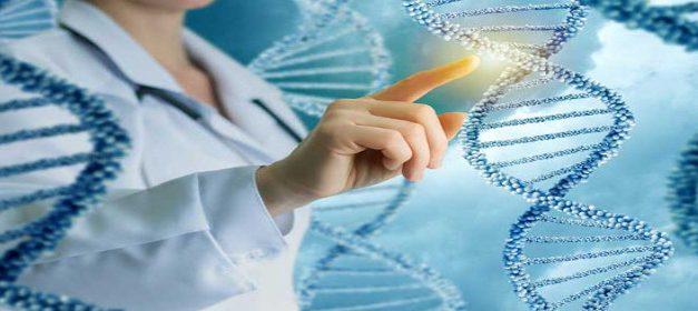 Algoritmes per a la bioenginyeria