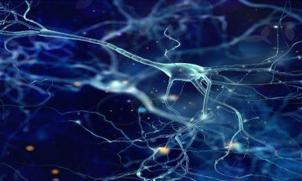 A l'avantguarda de la lluita contra l'Alzheimer