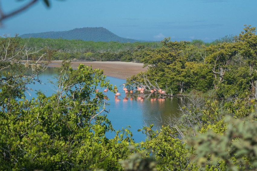 Galápagos. Isla Floreana