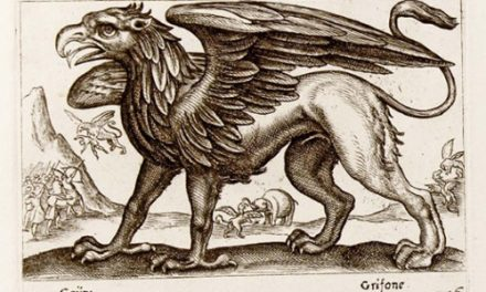 Bestiaries, fables and metamorphoses