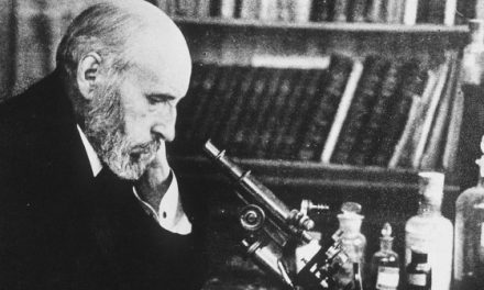 The most unknown Ramón y Cajal