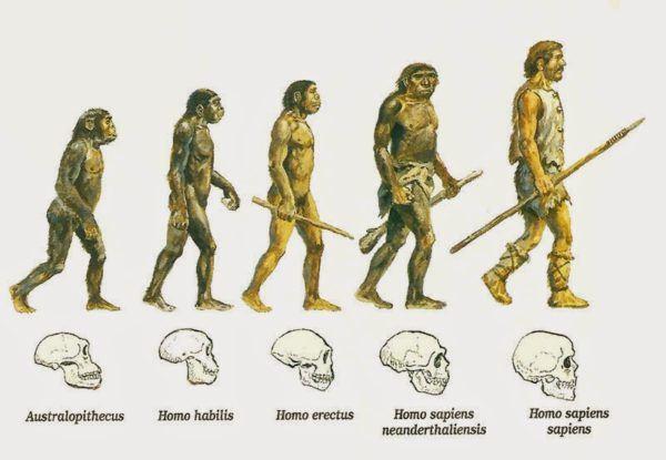 El carácter distintivo del ser humano en la evolución.