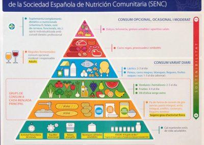piramide-alimentacion-saludable