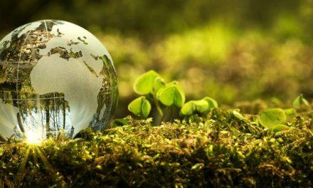 Un futur en verd
