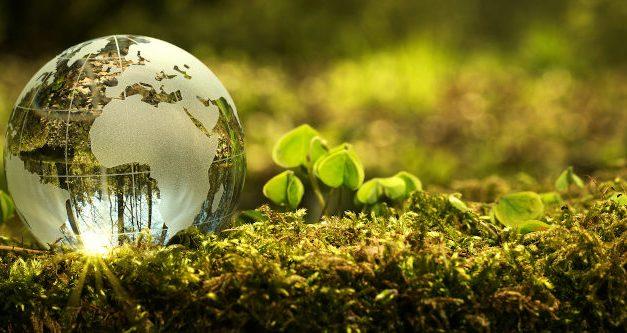 A future in green