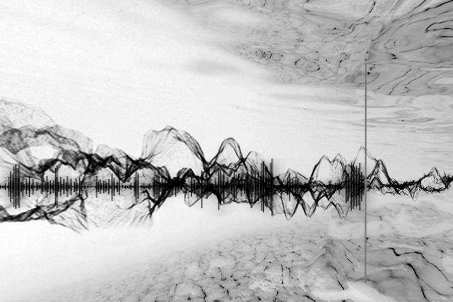 Obra de Robertina Sebjanic