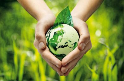 Ecologia i supervivència