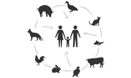 Prevención, un concepto genuinamente veterinario