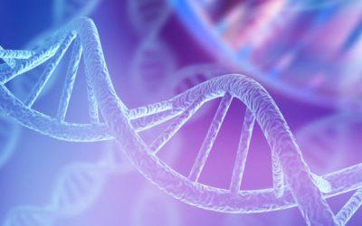 L'hora de la bioètica: de la ciència als valors