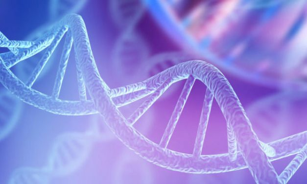 La hora de la bioética: de la ciencia a los valores