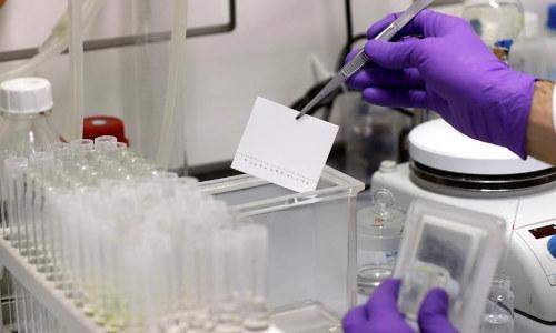 La plitidepsina, una nueva vía para frenar la Covid-19
