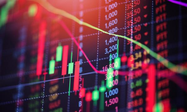 El camino del inversor para salir con éxito de la crisis
