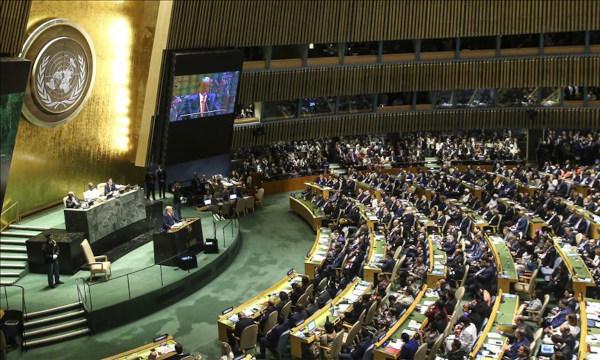 Rosalía Arteaga, candidata de la sociedad civil y la juventud a la Secretaría General de la ONU