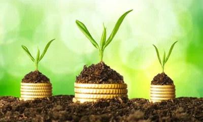 Les grans oportunitats de l'economia verda