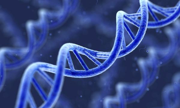 Órganos artificiales para avanzar en la regeneración celular y la lucha contra la Covid
